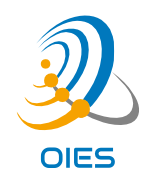 OIES Consulting